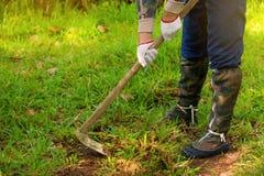 Homme sarclant son jardin avec la houe image stock