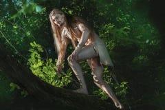 Homme sauvage sur l'arbre Photographie stock libre de droits