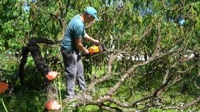 Homme sciant les branches d'arbre tombées avec la tronçonneuse dans son jardin Mouvement de cardan banque de vidéos