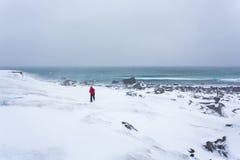 Homme seul dans le désert blanc d'hiver image stock