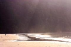 Homme seul marchant à la plage images stock