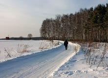 Homme seul sur la route de l'hiver Photo stock