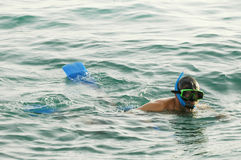 Homme snorkeling1 Image stock
