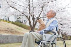 Homme supérieur asiatique s'asseyant sur un fauteuil roulant avec le chien Photo libre de droits