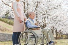 Homme supérieur asiatique s'asseyant sur un fauteuil roulant avec le travailleur social et le chien Images stock