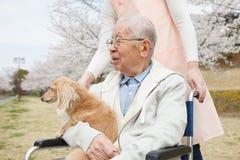 Homme supérieur asiatique s'asseyant sur un fauteuil roulant avec le travailleur social et le chien Images libres de droits