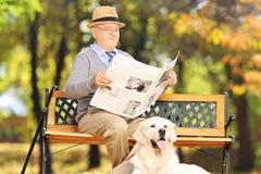 Homme supérieur assis sur un banc lisant un journal avec son chien Image stock