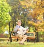 Homme supérieur assis sur un banc lisant un journal en parc Image libre de droits