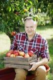 Homme supérieur avec Apple dans le champ de pommiers Image stock