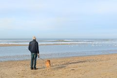 Homme supérieur avec le chien à la plage Photographie stock