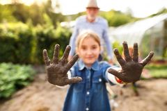 Homme supérieur avec le grandaughter faisant du jardinage dans le jardin d'arrière-cour Photographie stock
