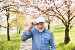 Homme supérieur en nature d'extérieur d'amour au printemps Photographie stock