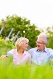 Homme supérieur et femme heureux dans le vignoble Photos stock