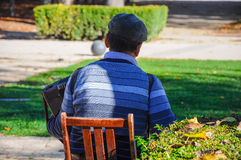 Homme supérieur jouant l'accordéon en parc photos libres de droits