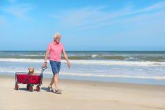 Homme supérieur marchant avec le chien à la plage Images stock