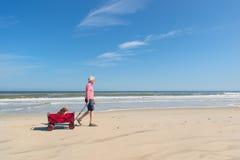 Homme supérieur marchant avec le chien à la plage Images libres de droits