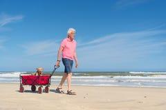 Homme supérieur marchant avec le chien à la plage Photos libres de droits