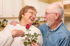 Homme supérieur romantique donnant Rose rouge à son épouse Photos libres de droits