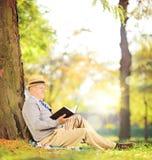 Homme supérieur s'asseyant sur une herbe et lisant un livre en parc sur le su Photographie stock libre de droits