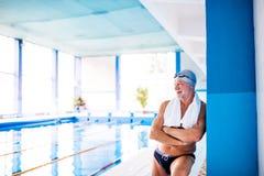 Homme supérieur se tenant dans une piscine d'intérieur Images libres de droits
