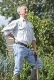 Homme supérieur souffrant des douleurs de dos tout en faisant du jardinage Photos stock
