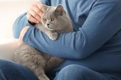 Homme supérieur tenant le chat mignon photos libres de droits