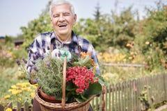 Homme supérieur tenant les fleurs remplies par panier Photographie stock libre de droits