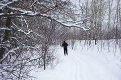 Homme sur des skis Photo stock
