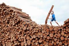Homme sur la grande pile des rondins soulevant le rondin lourd - formation image stock