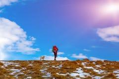 Homme sur la hausse de montagne marchant avec le ciel bleu et le Sun de chien Photo libre de droits