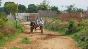 Homme sur le chariot d'âne images stock