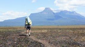 Homme sur le chemin à la montagne photo libre de droits