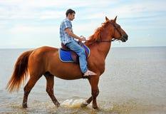 Homme sur le cheval Photos stock