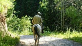 Homme sur le cheval en bois photos stock