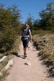 Homme sur une traînée de trekking Images libres de droits