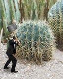 Homme tenant le marteau avec le cactus Photos stock