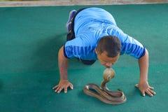 Homme thaïlandais embrassant le cobra Image stock