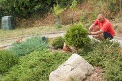Homme travaillant dans le jardin Le jardinier compense des fleurs Photo libre de droits