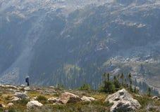 Homme trimardant au-dessus de la vallée de Callaghan image libre de droits