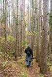 Homme trimardant dans les bois avec l'appareil-photo Images stock
