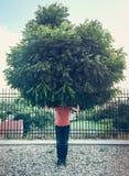 Homme vert Photo stock