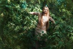 Homme vivant dans les bois Photographie stock libre de droits