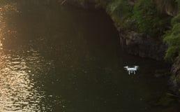 Hommel die over rivier vliegen Stock Afbeeldingen