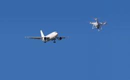 Hommel en vliegtuig Stock Afbeelding