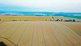 Hommel lucht landbouwgebieden stock video