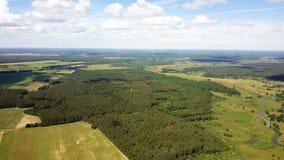 Hommel roteren verlaten aan plattelandshorizon Filterend antenne 360 van ongelooflijke aard, bos, gebieden en rivier wordt gescho stock videobeelden