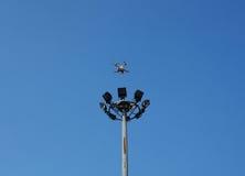 Hommel tijdens de vlucht tegen een blauwe hemel Royalty-vrije Stock Foto's