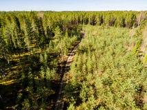 hommelbeeld luchtmening van plattelandsgebied met rivier in bossen Stock Fotografie