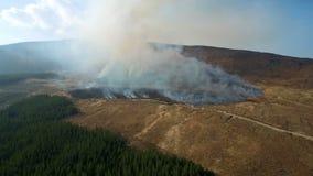 Hommellengte van bosbrand en bergen stock video