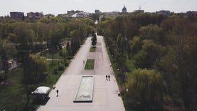 Hommelmening over de steeg in het park op een zonnige dag in de lente in stad stock videobeelden